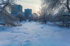 Costruzioni di appartamento nella città nell'inverno Fotografie Stock