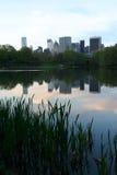 Costruzioni di NY da Central Park Immagine Stock