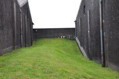 Costruzioni e recinto della distilleria di Scapa Fotografia Stock