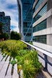 Costruzioni moderne seguendo l'alta linea in Manhattan, New York Fotografie Stock Libere da Diritti