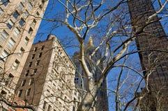 Costruzioni a New York Fotografie Stock Libere da Diritti