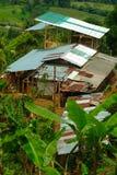 Costruzioni su un'azienda agricola del caffè fotografia stock