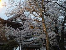 Costruzioni a Tokyo Immagini Stock