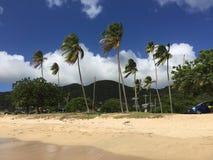 Antigua Beach. Costs of the sea of Antigua and Barbuda ocean beach stock image