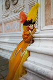 costume декоративный venice масленицы Стоковая Фотография RF