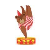 Costume animal d'In Stripy Body d'artiste d'ours de cirque exécutant l'un cascade acrobatique de support de main pour l'expositio Images stock
