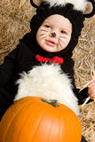 Costume Baby Royalty Free Stock Image