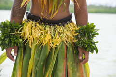 Costume of a Dancer in the South Pacific royalty free stock photography