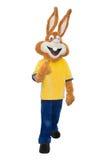 Costume de mascotte de lapin d'isolement sur le fond blanc images stock