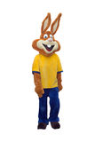 Costume de mascotte de lapin d'isolement sur le fond blanc Photo libre de droits