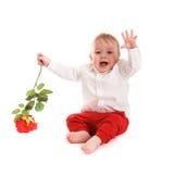Costume de monsieur de bébé garçon et papillon de lien sur le fond blanc Photos libres de droits