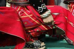 Costume del dettaglio fotografia stock libera da diritti
