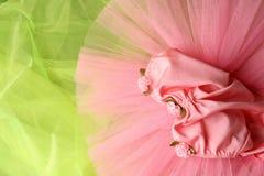 Costume di balletto Fotografie Stock Libere da Diritti