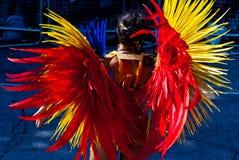 Costume di carnevale di Notting Hill Fotografie Stock
