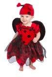 Costume di Halloween del bambino Immagini Stock