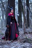Costume Drama. Charming and Beautiful Maleficent Female with Highbred Dog on Leash. Posing Together in Early Spring Forest royalty free stock images