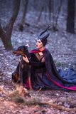 Costume Drama. Charming and Mysterious Maleficent Female with High Bred Dog on Leash. Posing Together in Early Spring Forest stock photos