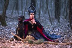Costume Drama. Charming and Mysterious Maleficent Female with High Bred Dog on Leash. Posing Together in Early Spring Forest royalty free stock photo