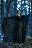 Costume Drama Play. Mysterious and Magical Maleficent Woman with Horns Posing in Spring Empty Forest with Wavy Shawl royalty free stock image