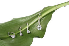 Costume jewelry on fresh green leaf Royalty Free Stock Image