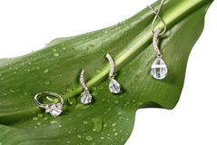 Costume jewelry on fresh green leaf with water drops isolated on Stock Photography