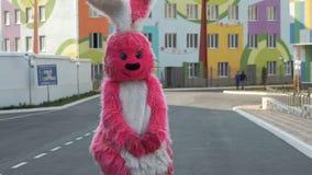 Costume rosa del coniglio della peluche video d archivio