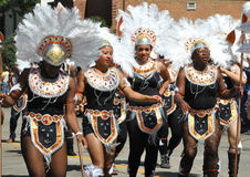Costumed  Cariwest Dancers Royalty Free Stock Photo