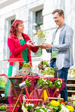 Costumer buying flower in flower shop Royalty Free Stock Photography