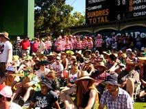 Costumi del cricket: Dove è Wally immagini stock libere da diritti