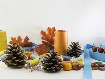 Costurando a queda Uma decoração da queda com materiais da costura imagem de stock royalty free