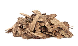 Costus Root Stock Images