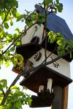 So cosy birdhouse on the top of a appletree in the spring garden royalty free stock photography