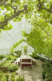 Cosy conservatory greenhouse Stock Image