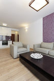 Cosy flat - living room. And kitchen in modern house royalty free stock image