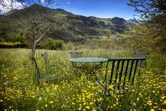 Cosy garden stock images