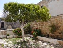 Cosy greek yard Stock Photos