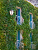 The cosy house. A wall of the house with balconies and a lantern, covered by an ivy Royalty Free Stock Photo