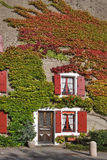 Cosy small house. A window with red jalousie and branches of an ivy on a wall of the house in settlement Verdon Stock Image