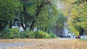 Cosy uliczny pełny kolorowi spadać liście Ludzi i samochodów sylwetki na zamazanym tle zbiory wideo