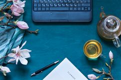 Cosy work space flat lay with magnolia flowers, laptop and green tea,. Top view spring composition. Copy space stock image