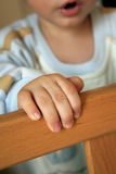 In the cot. Baby standing in the cot Stock Photography