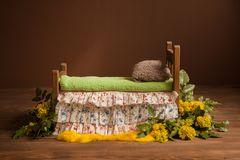 Cot for photo shoots of a newborn with yellow flowers and green leaves royalty free stock image
