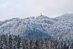 Cota 1400, Sinaia, Rumänien royaltyfri foto