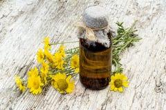 Cota tinctoria (Anthemis tinctoria) and pharmaceutical bottle Royalty Free Stock Photos