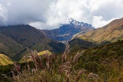 Cotacachi vulkan Royaltyfri Foto