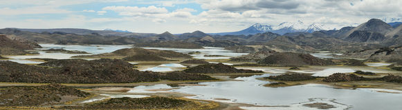 Cotacotani lakes in Lauca National Park Stock Photography