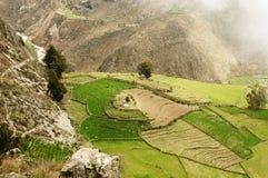 cotahuasi Перу каньона Стоковое Изображение