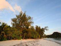 Cote D`Or Beach. Praslin island. Seychelles Royalty Free Stock Photos