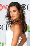 Cote de Pablo Royalty Free Stock Photo