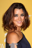 Cote de Pablo arrives at the City of Hope's Music And Entertainment Industry Group Honors Bob Pittman Event. LOS ANGELES - JUN 12:  Cote de Pablo arrives at the Stock Photo